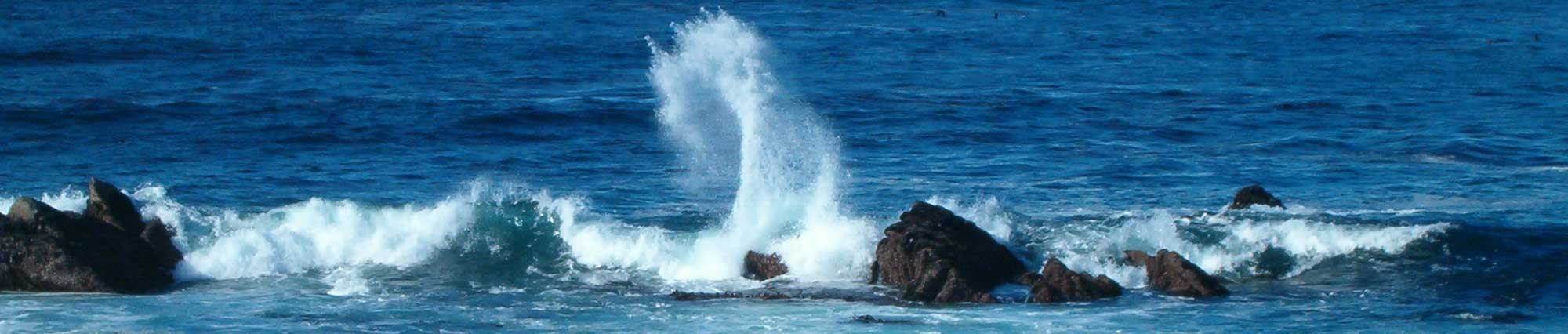 Photo-ocean2